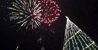 В Батуми зажглись огни на главной новогодней елке города