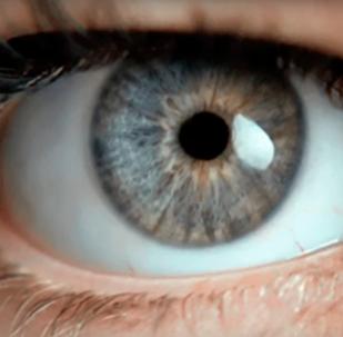 ვიდეოკლუბი: გასაიდუმლოებული და უკვე ტესტირებული ვიდეო მხედველობისთვის