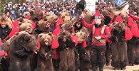 парад Медведей