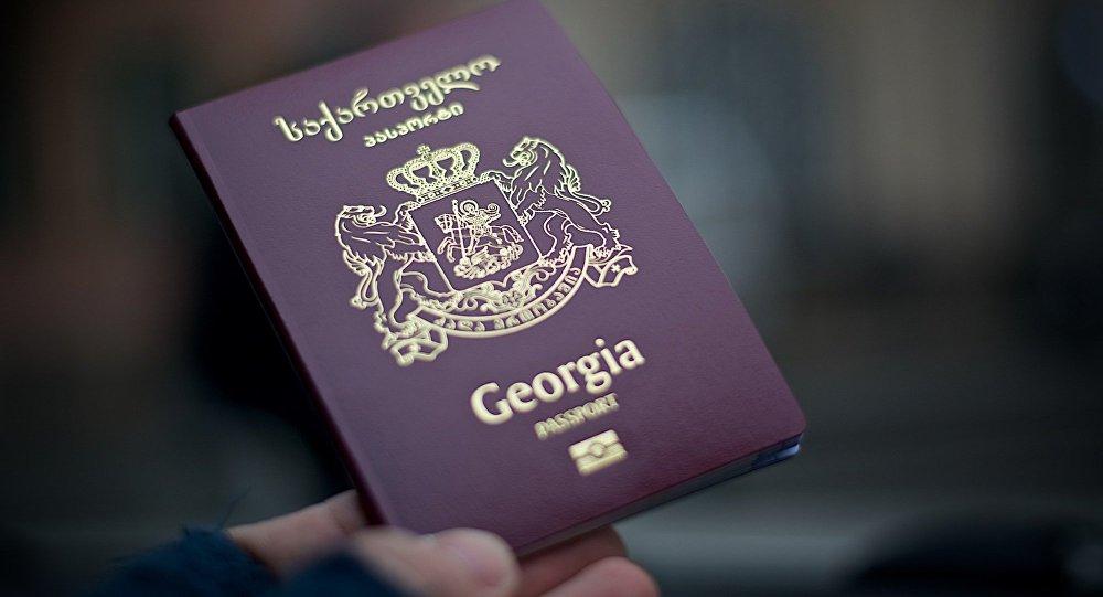 Франция не исключает приостановки Евросоюзом безвиза для Грузии