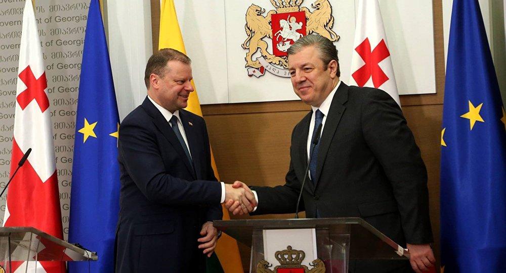 Премьер Литвы: нас сГрузией соединяет воединыжды особый «ген свободы»