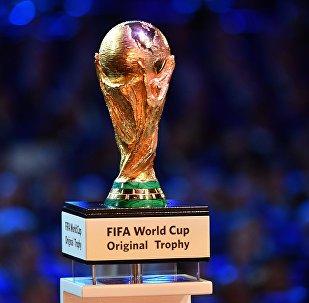 Кубок чемпионата мира по футболу был представлен публике на официальной жеребьевке чемпионата мира по футболу 2018
