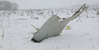 Крушение самолета Ан-148 в Подмосковье