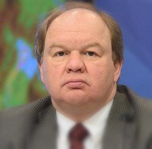 Директор Центра европейской информации Николай Топорнин