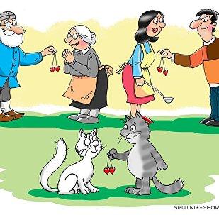 Любви все возрасты попкорны - карикатура