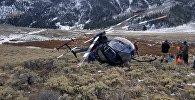 Исследовательский вертолет, сбитый оленем
