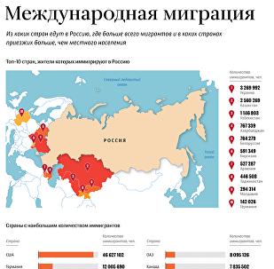 Из каких стран едут мигранты в Россию