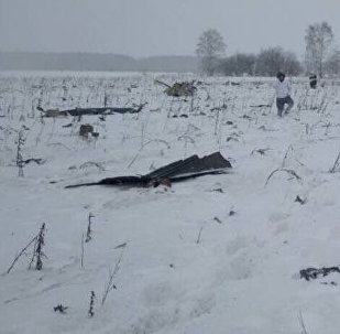 Место крушения самолета Ан-148 в Подмосковье
