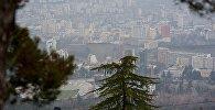Тбилиси в тумане