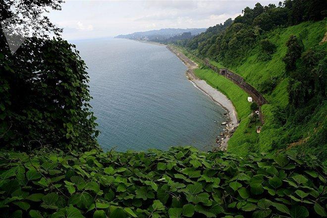 Вид на Зеленый мыс и черноморское побережье Аджарии со смотровой площадки батумского Ботанического сада