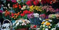 Цветочный рынок в столице Грузии