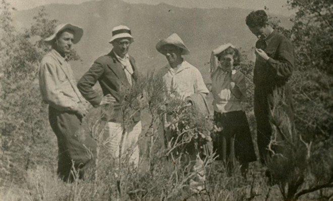 ირაკლი ქავთარაძე, სიმონ ჯანაშია, არნოლდ ჩიქობავა, ტასიკო ამბრიაშვილი და გიორგი ლომთათიძე