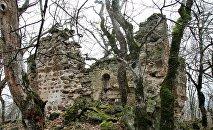 Остатки монастырского комплекса