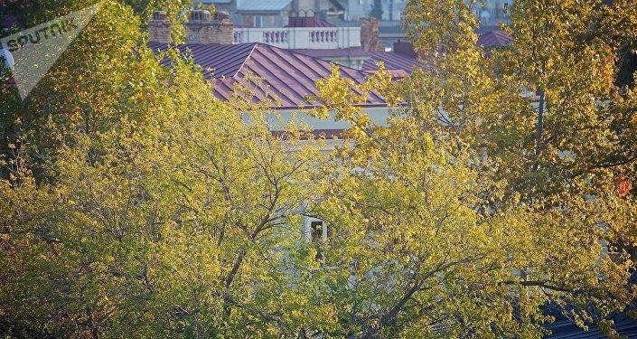 Теплая осенняя погода в Тбилиси