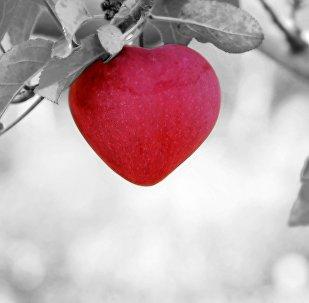 გულის ფორმის ვაშლი